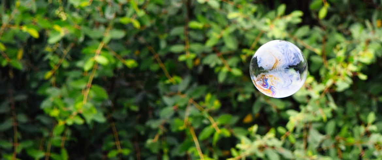saponi naturali e prodotti per la pulizia ecologici. Una bolla di sapone tra il verde degli alberi
