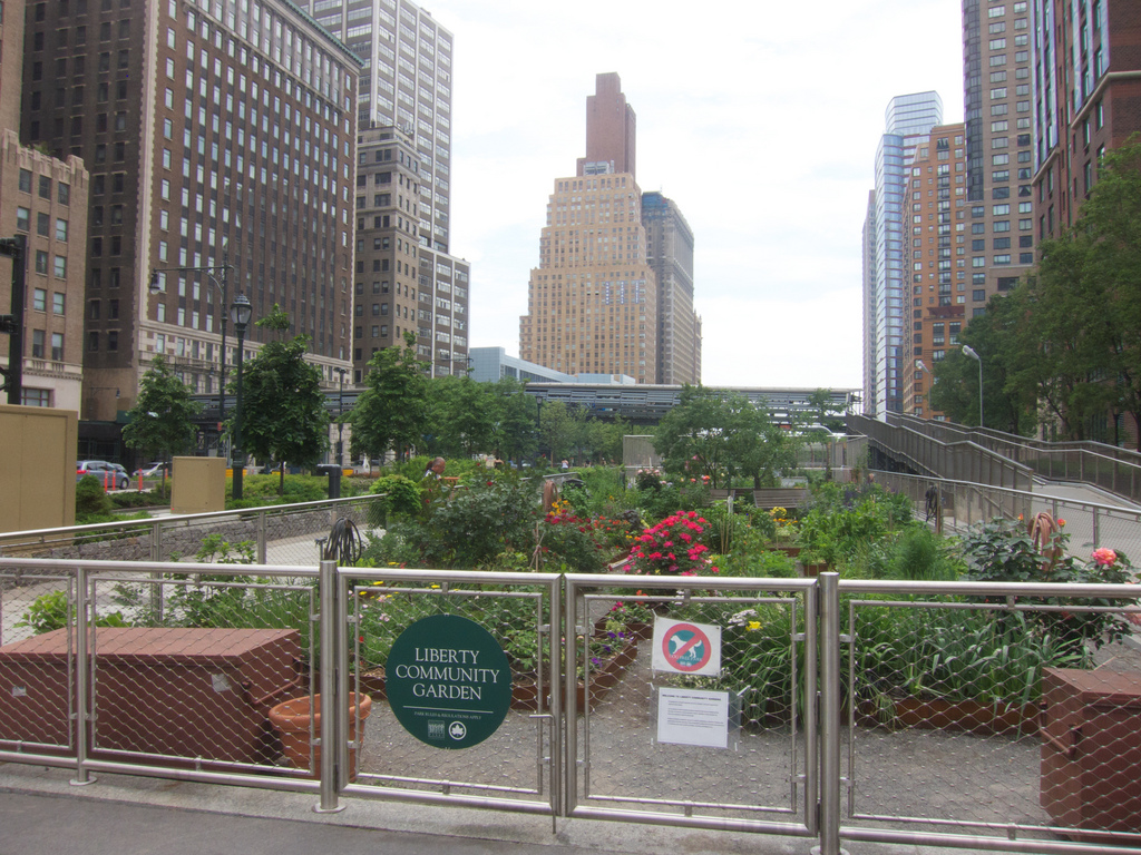 Orti urbani a New York