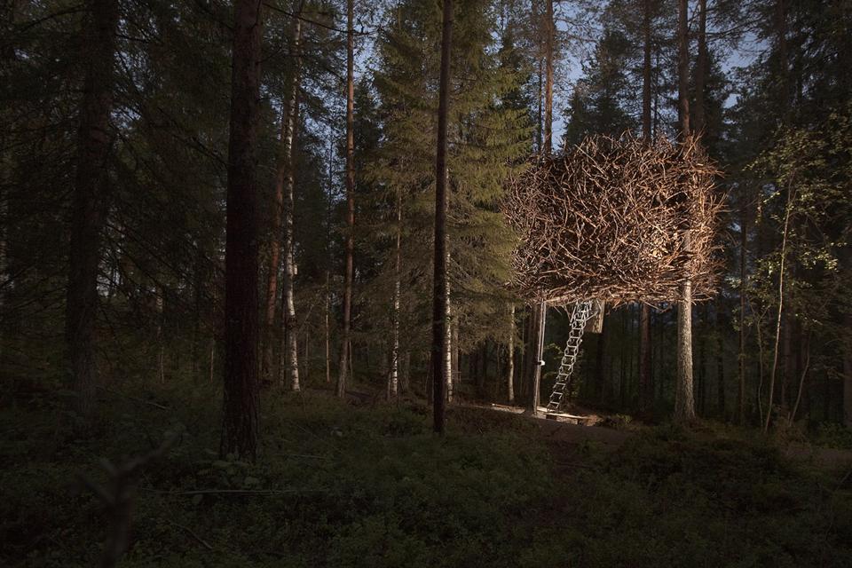 Casa sull'albero The Bird's Nest