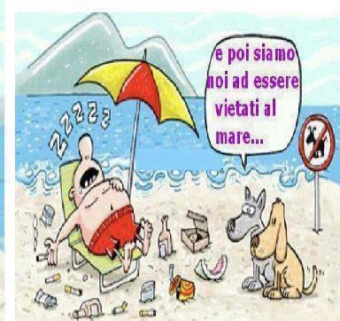 Vacanza con il cane spiaggia