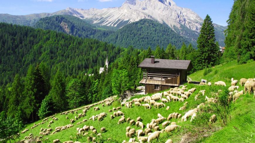 Alberghi diffusi sostenibili: L'Ospitalità Diffusa di Sauris
