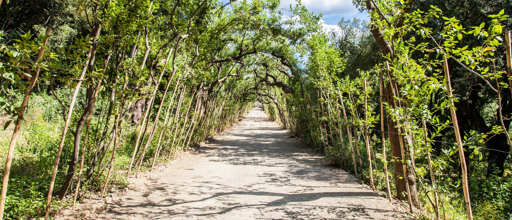 Florence Italy Old Boboli Gardens During A Sunny Day In
