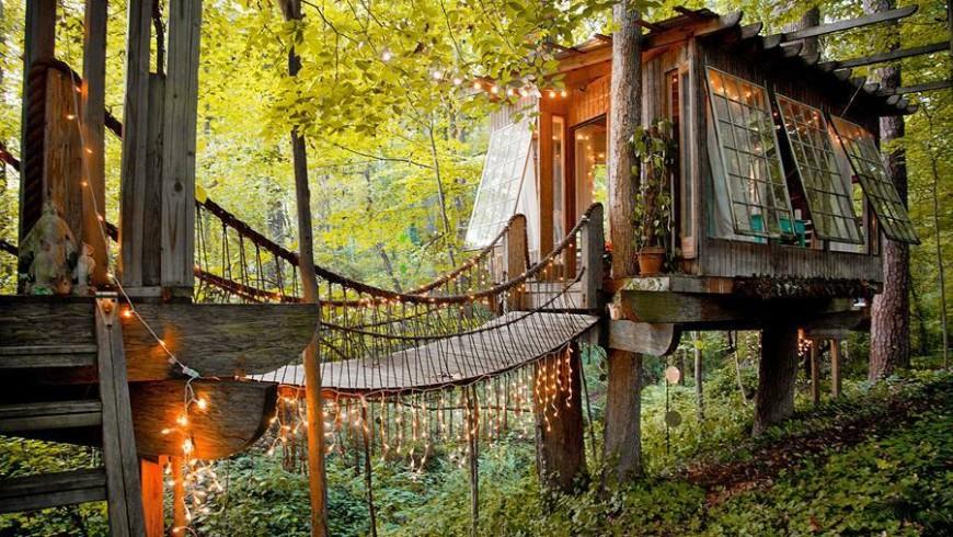 case tra gli alberi