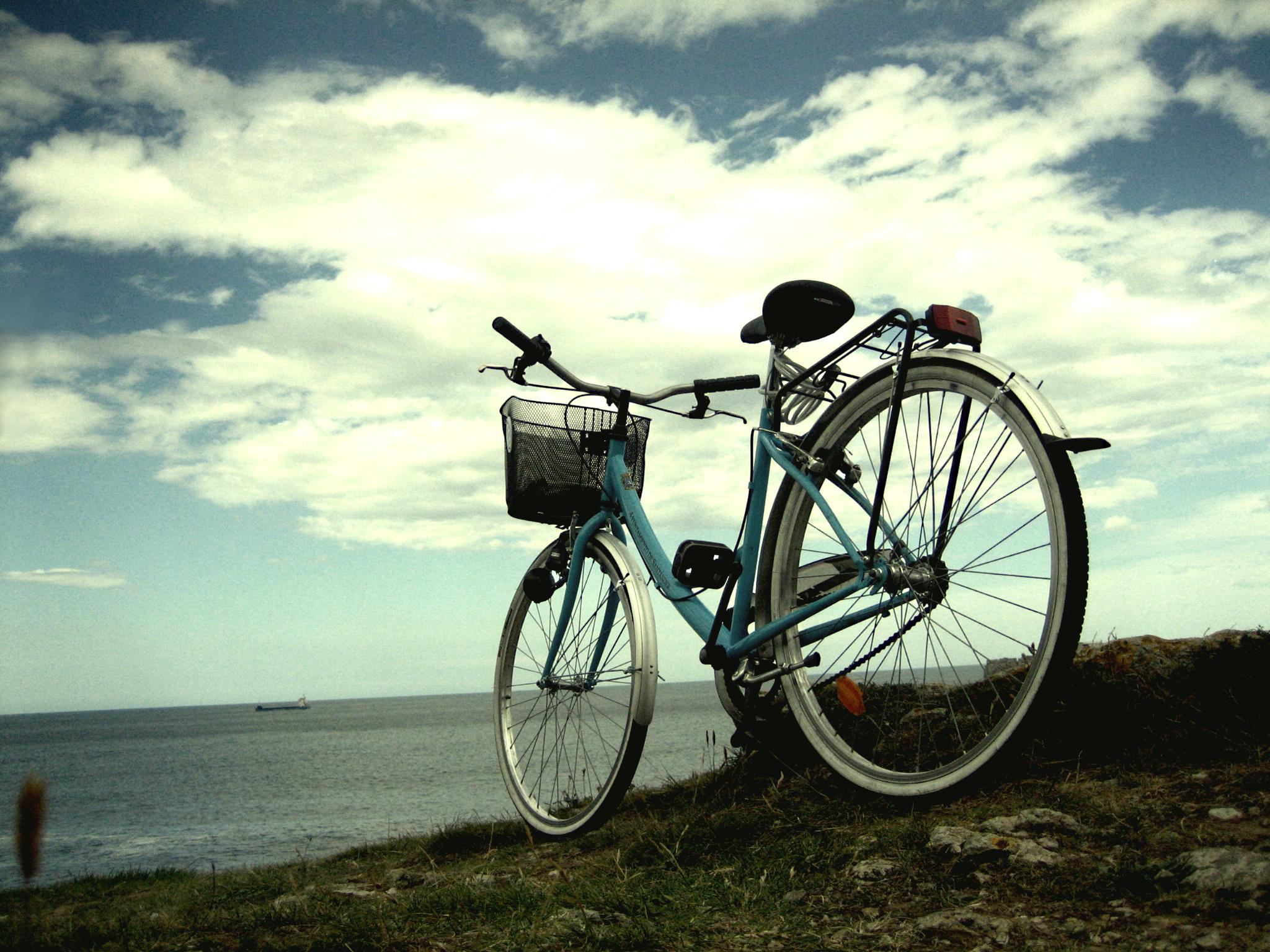 bici mare