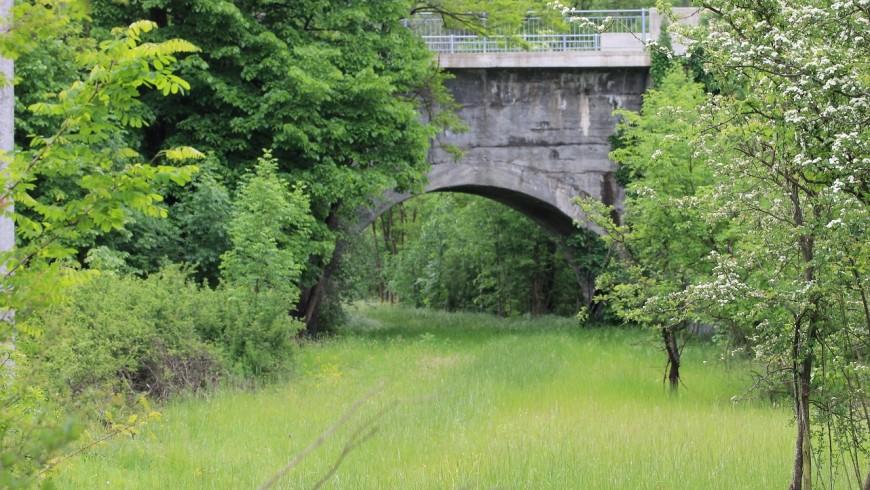 Ponte carrabile di inzio percorso anello-foto di Emanuele Benigni