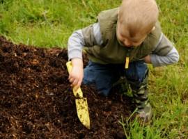 Giovane giardiniere