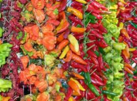 Peperoncini al mercato di Positano