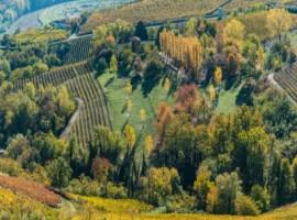 Autunno nel Monferrato