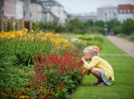 Danimarca Green, Il Giardino Reale di Copenaghen