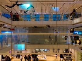 Museo della scienza di Trento, uno dei musei più ecosostenibili d'Italia, interno