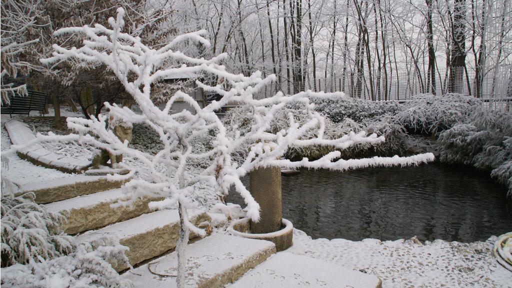 biopiscina in inverno, coperta di neve