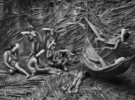 Terra, Amazzonia, foto della mostra Genesi