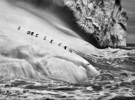 La terra e i ghiacci, foto della mostra Genesi