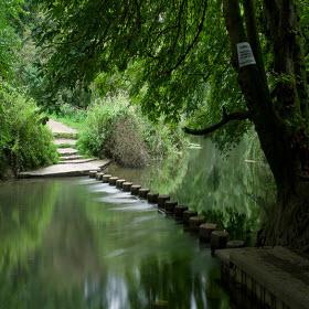 la sponda del fiume Mole in UK