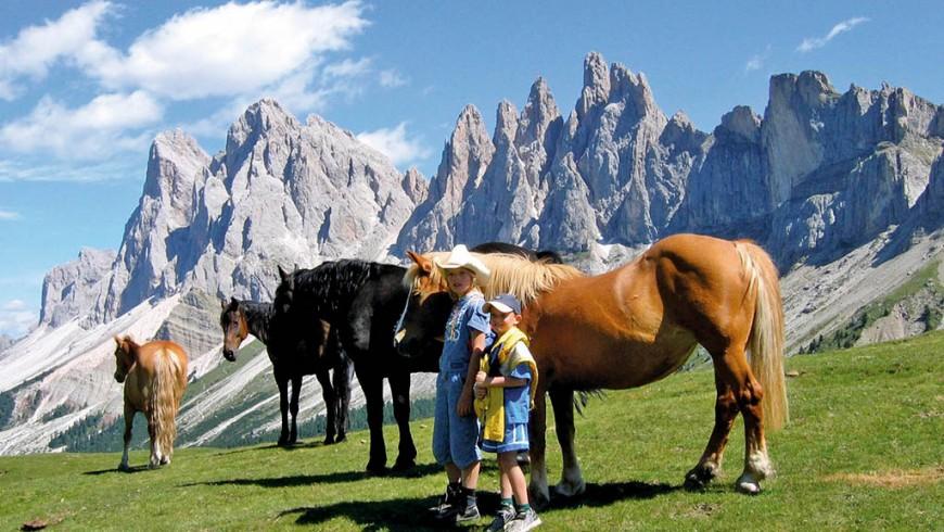 Emozioni a cavallo nelle Alpine Pearls