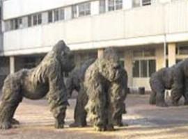 Statue gorilla