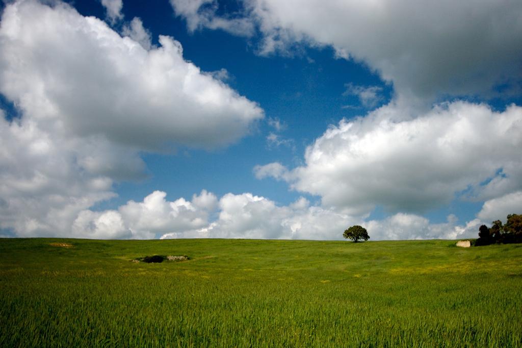 Paesaggio verde vicino a Matera, Basilicata