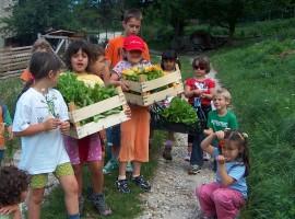 Bambini al lavoro nell'orto biologico dell'agriturismo bio La Fonte a Folgarida