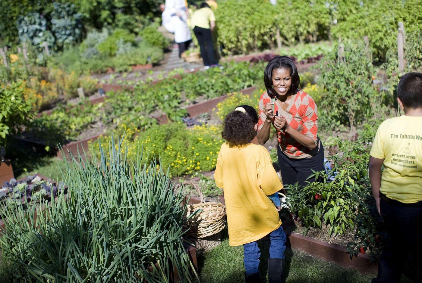 Orto bio, Michelle Obama cura l'orto della Casa Bianca