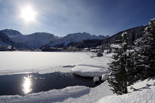 arosa, con le ciaspole sulla neve