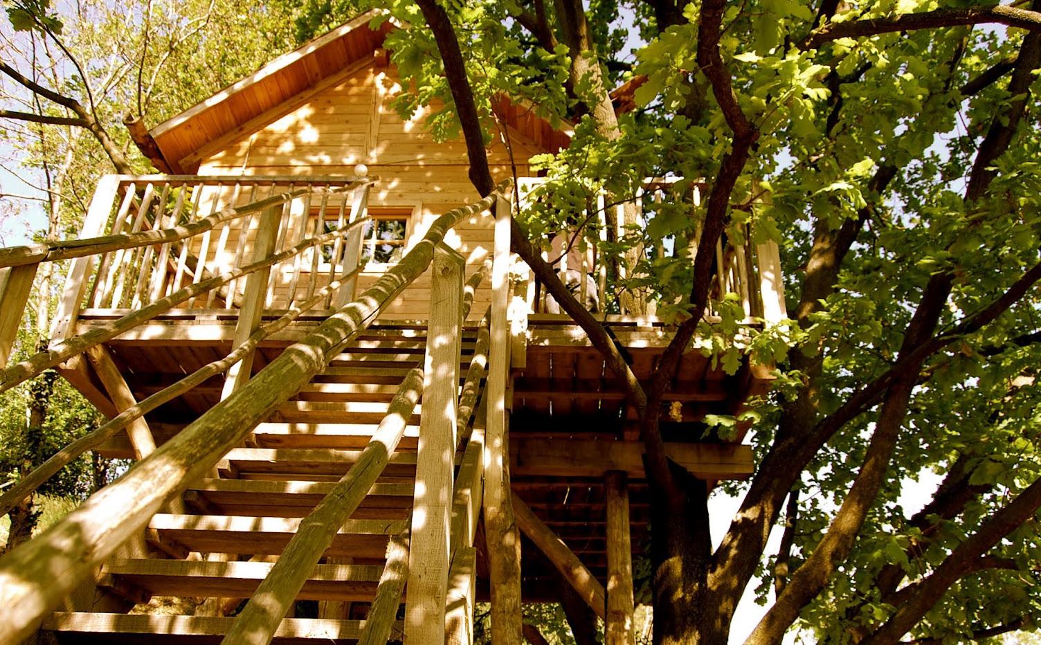 casa-hotel sull'albero, a Manta, Cuneo