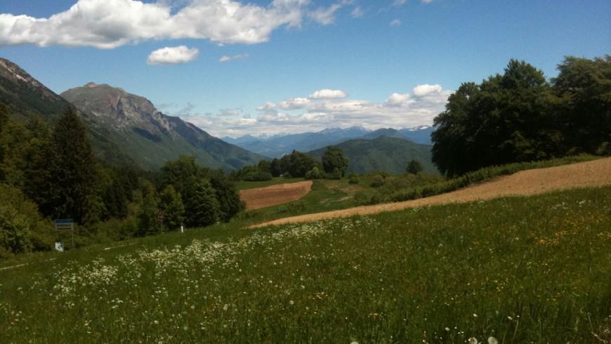 Panorama della val di Gresta: prati alberi e montagne