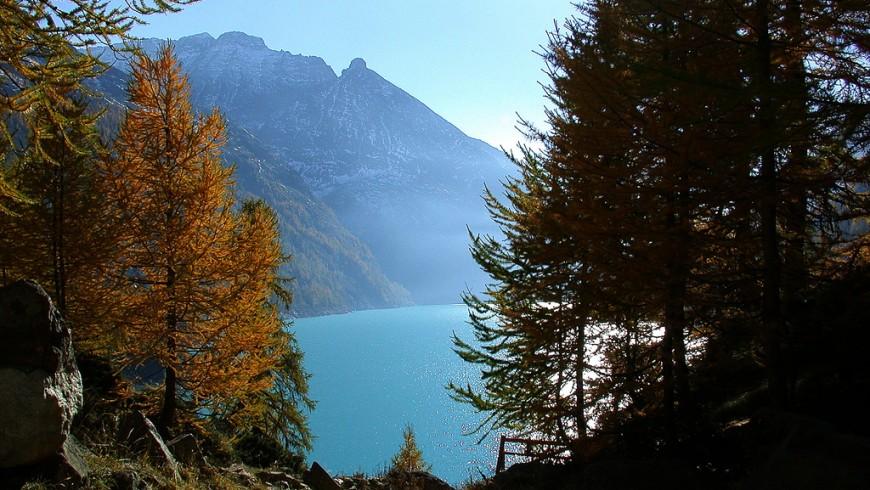 la valpelline in autunno: lago e alcuni alberi