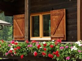 Orse Rose Chalet, fiori