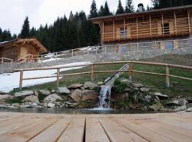 chalet nel doch, Trentino