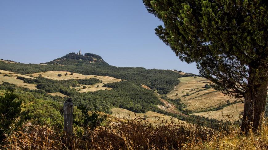 Paesaggio collinare toscano dove si alternano boschi e campi. In fondo a sinistra si vede il colle dove sorge Radicofani