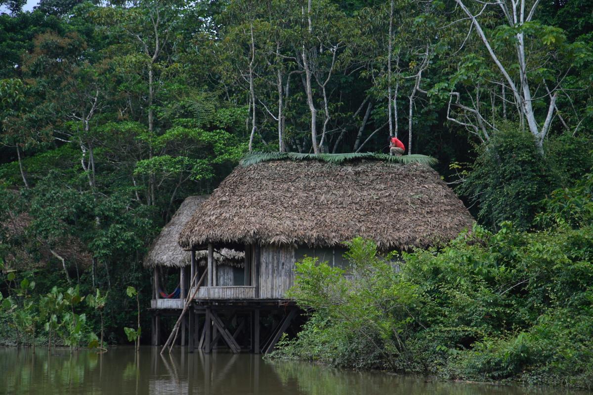 Capanna sul fiume in Amazzonia