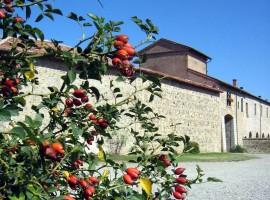 Corte di Giarola, Parco del Taro, Turismo Emilia Romagna, via flickr