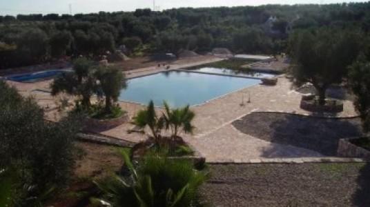 la piscina biologica naturale della masseria Sciaiani Piccola (BR)