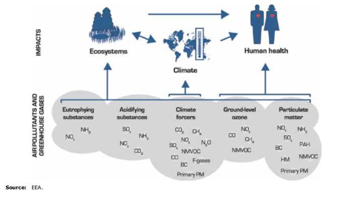 L'impatto dell'inquinamento dell'aria sulla salute dell'uomo, sul clima e sugli ecosistemi
