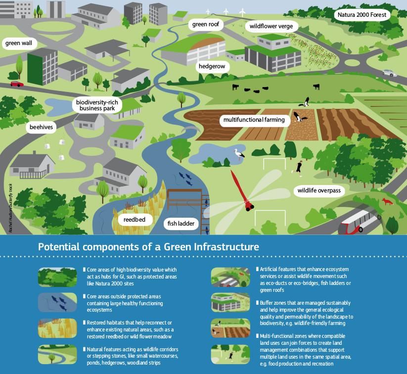 Green Infrastructure - Infrastrutture Verdi