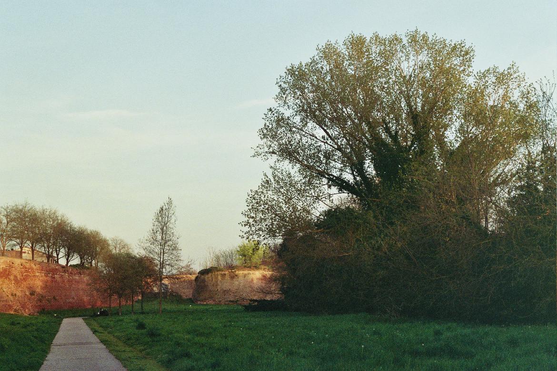Ferrara, antichi sentieri