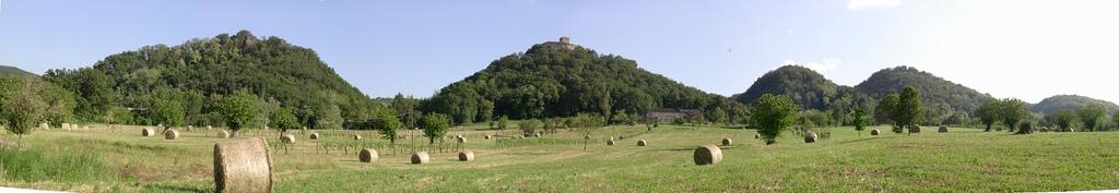 Quattro Castella, le colline verdi a sud di Reggio Emilia