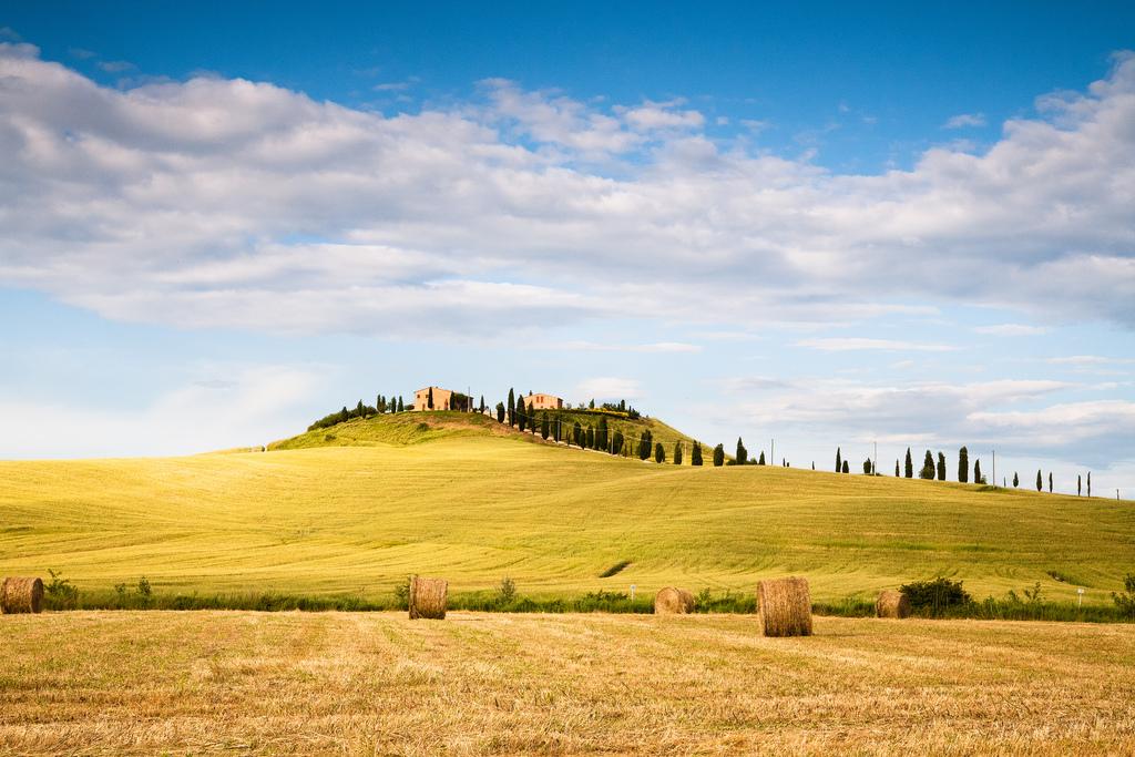 Agriturismo biologico tra le colline toscane