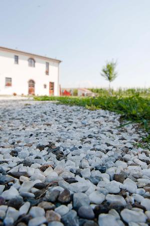 La locanda di via della Ralla, Pistoia, Toscana, il giardino esterno