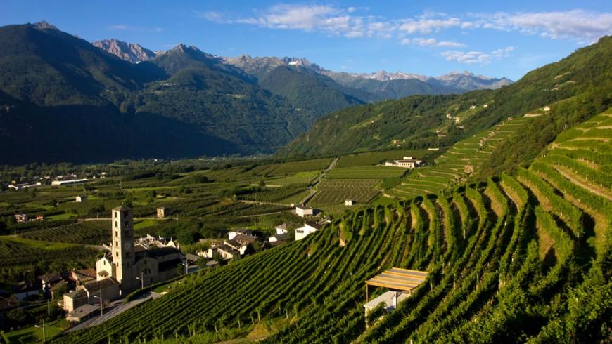 La Via dei Terrazzamenti in Valtellina