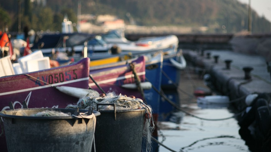 Barche da pesca e pesce del lago di Garda