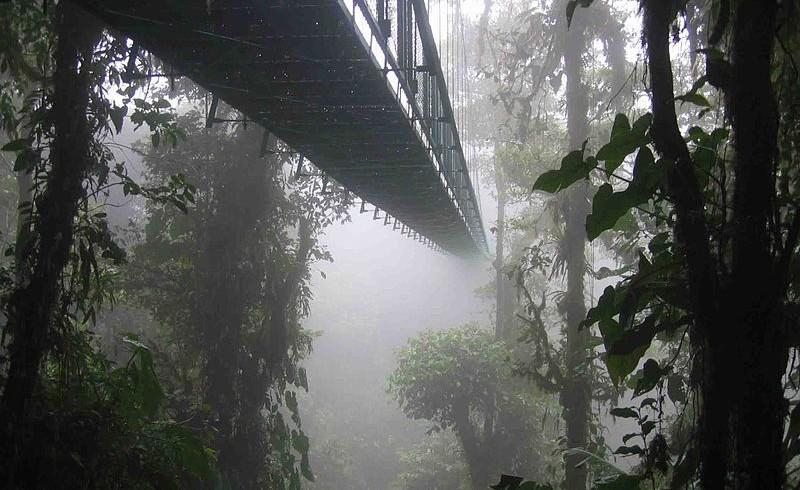 Percorso tra gli alberi, Sant'Elena Skywalk, in Costarica