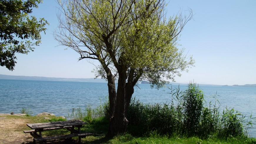Itinerario a piedi verso il Lago di Bolsena