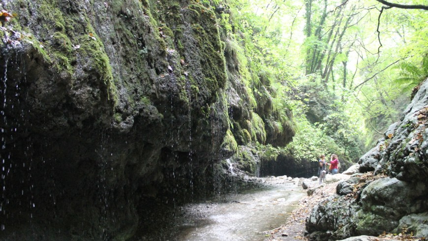 Valle delle Ferriere, una riserva naturale nel cuore della Costiera Amalfitana,