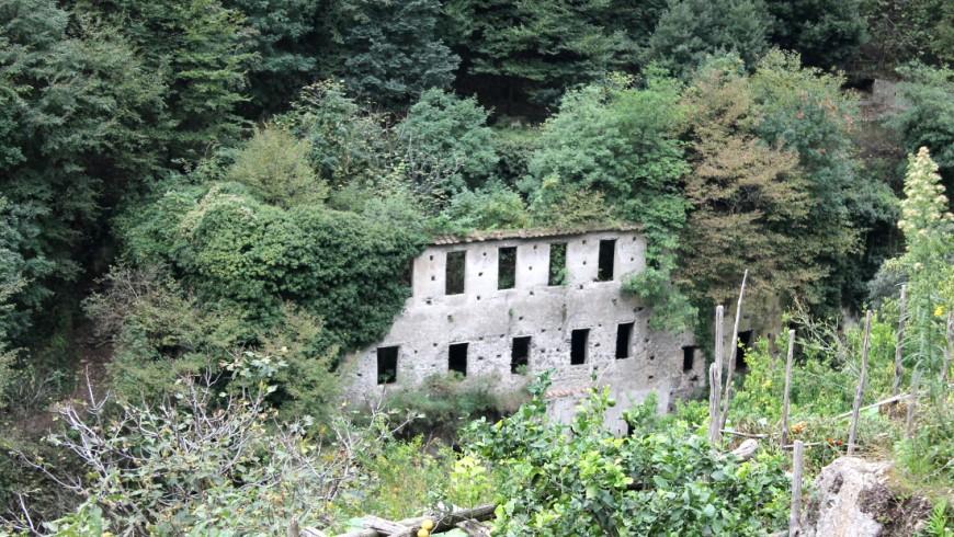 Antico edificio invaso dal verde nella Valle dei mulini, o valle delle ferriere, amalfi