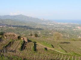 Eco Casa sull'Etna, Catania, offre anche la possibilità di soggiornare in Agricampeggio