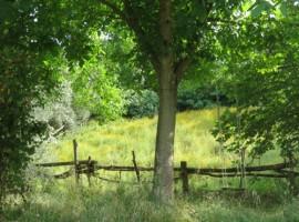Agricampeggio Yuptala, Toscana