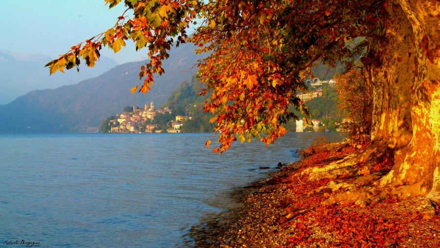 Foliage e colori dell'autunno sul lago di Como