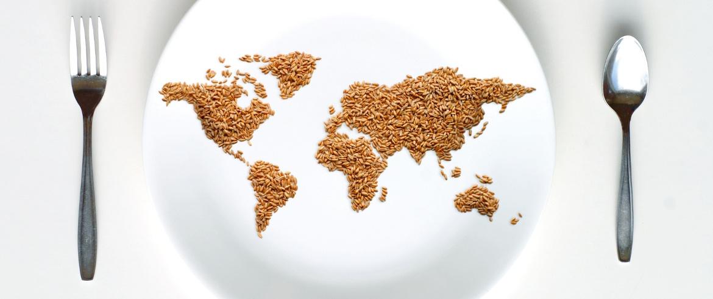 evitare gli sprechi di cibo