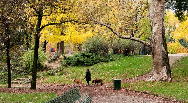 Colori dell'autunno nel giardino Idro Montanelli, Milano